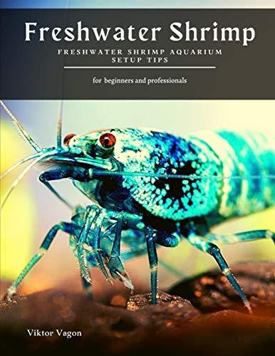 Freshwater Shrimp: Freshwater Shrimp Aquarium Setup Tips