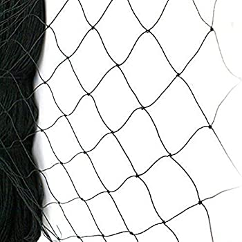 Best chicken netting Reviews
