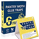 Best Moth Traps - WGCC Pantry Moth Traps 6-Pack - Safe Non-Toxic Review