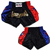 Muay Thai Boxing Shorts, UFC Fight Boxing, MMA Shorts Silver/Gold Gold-L