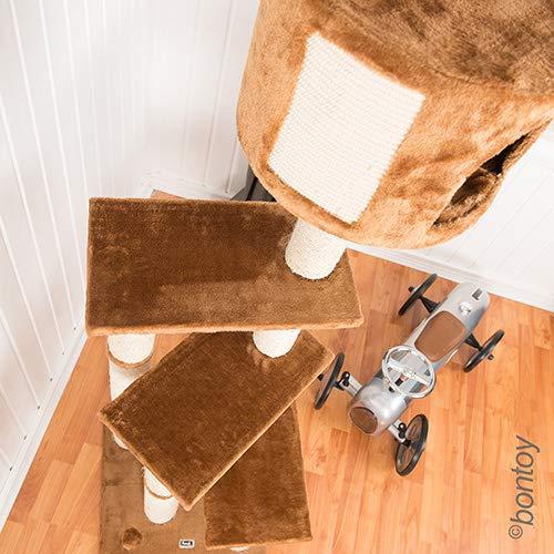 Das 3 Ebene Bontoy Katzenbaum / Höhenverstellbar - 5