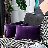 UPOPO Juego de 2 fundas de cojín de terciopelo, decorativas, de un solo color, suave, para sofá, dormitorio, salón, con cremallera, 30 x 50 cm, color morado