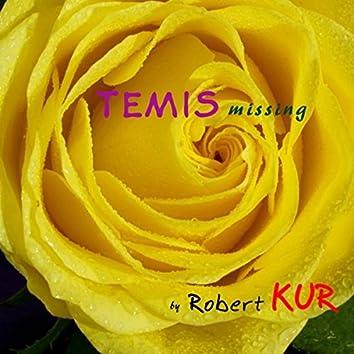 Temis Missing Original Mix
