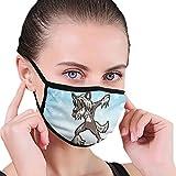CZLXD - Máscara Antipolvo para Perro Chino, Antipolvo, máscara anticontaminación para Hombre y Mujer