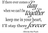 If There Ever Comes a Day Winnie the Pooh vinyl decal