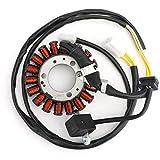 Artudatech Alternador de Motocicleta Magneto Stator Coil, Generador de Motor Magneto Generador de Bobina de Encendido para VT125 Shadow 99-07 XL125V XLV125 Varadero JC32 01-06