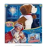 Elf Pets A Saint Bernard Tradition | Elf on the Shelf Pets | Accesorios de elfo, accesorios de elfo en el estante