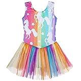 Girls Dance Leotards with Skirt size 2 3 Ballet Tutu Dance Dress Mermaid Unicorn Gymnastic Skirt(Baby Girls/Toddler Girls/Big Girls) (Colorful Stripe, 100(2-3 years old))