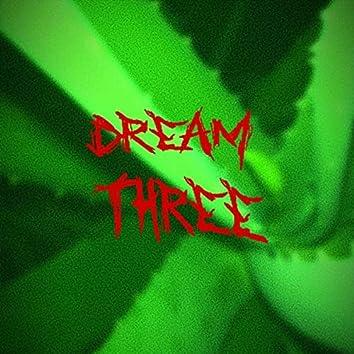 Dream Three