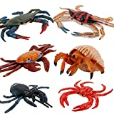 TOYANDONA, 6 pezzi, granchio in miniatura di animali marini in plastica, giocattolo realistico, colore casuale, granchio reale, cancro di cocco, ristorante, decorazione per la casa, regalo di Natale