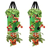 2 Pieces Upside-Down Planting Bag, Hanging Strawberry Planter Gardens Upside Down Planter Strawberry Bare Root Plant Bag Garden Vegetable Planting Bags with Holes for House Garden