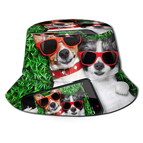Bokueay Dos Perros Gafas de Sol Rojas en Verde Prado Sombrero de Cubo con Estampado de Pescador Gorra de Sol de Pesca para Mujeres Viajes