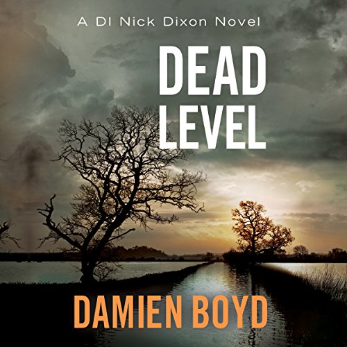 Dead Level audiobook cover art