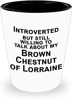 Brown Chestnut of Lorraine Rabbit, Bunny Shot Glass, Gift for Rabbit Lover, Introvert Gifts - Introverted But Willing to Talk Rabbits