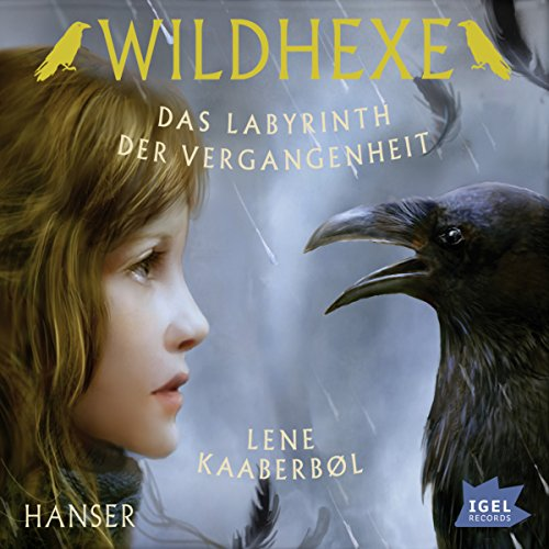Das Labyrinth der Vergangenheit audiobook cover art