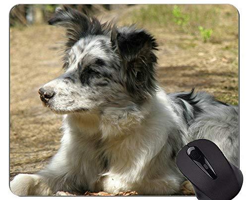 Australische Schäferhund-Mausunterlage, Hundemausunterlagen