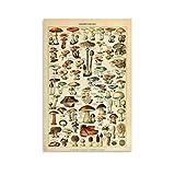 GANGPAO Vintage-Pilz-Poster auf Leinwand, Kunstdruck,