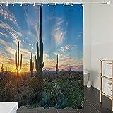 Duschvorhänge, Textil Bad Vorhang aus Polyester, Anti-Schimmel, Saguaro Cactus Decor, Sun Shine zwischen Kaktus Stacheln magischen Mittag Landsch,Blickdicht, Wasserdicht, Waschbar, 180X180CM