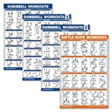 Palace Learning 4 Pack - Dumbbell Workout Posters Volume 1, 2 & 3 + Battle Rope Exercise Chart - Set of 4 Posters (Laminated, 18' x 24')