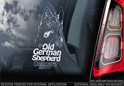 Alt Deutscher Schäferhund - Auto Sticker - Hund Zeichen Fenster, Stoßstangen Aufkleber Geschenk - V001 - Weiß/Klar - Externe außerhalb Aufdruck, 220x100mm