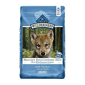 Blue Buffalo Wilderness High Protein Natural Puppy Dry Dog Food plus Wholesome Grains Chicken 11-lb