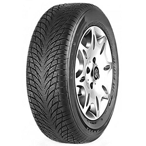 Goodride, SW602, pneumatici per tutte le stagioni (205/55 R16 91H)