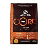 Wellness CORE Natural Grain Free Dry Dog Food, Original Turkey & Chicken, 12-Pound Bag