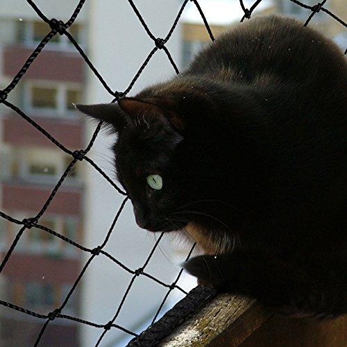 casa pura® Katzennetz | mit Befestigungsseil | Katzenschutz für Balkon, Terrasse, Fenster und Tür | reißfest, aus hochfestem Nylon | 2,5 x 6 m - 2
