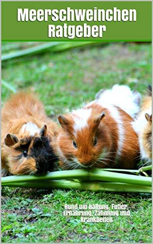 Meerschweinchen Ratgeber: Rund um Haltung, Futter, Ernährung, Zähmung und Krankheiten