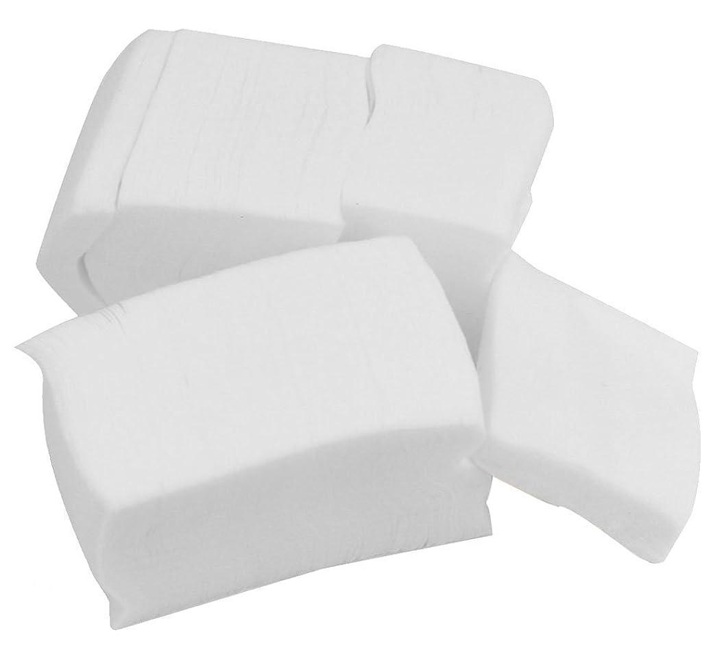 心配する韓国最悪CJESLNA Lint Free Nail Art Wipes Polish Acrylic Remover [並行輸入品]