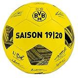 BVB Borussia Dortmund Unterschriften Ball