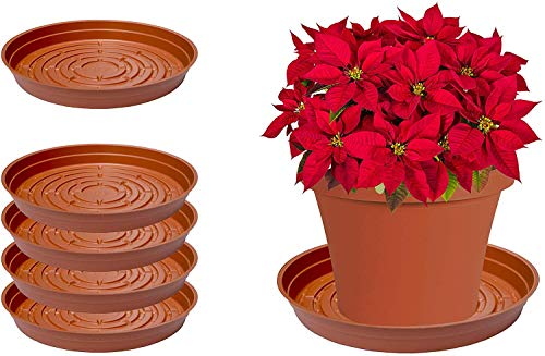Curtis Wagner Plastics Plant Tray Drip Pan Saucers 5Pack  Terracotta Round Diameter = 4quot top 3quot Bottom 112quot Depth Thin Plastic for Indoor or Garden  Clear Black amp Terracotta Floor Savers