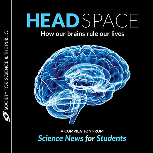 Head Space audiobook cover art