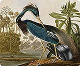 Audubon Little Blue Heron Mouse Pad Mauspad 8.6 X 7.1 in