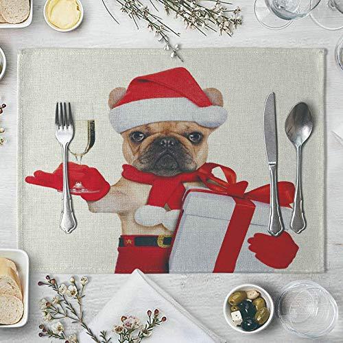 Bishilin Mantel Individual, Fácil De Limpiar Antideslizante 4Pcs Perro De Navidad con Caja De Regalo Manteles Individuales Limpiables Manteles Individuales para Mesa De Cocina Rojo Blanco 40X30Cm