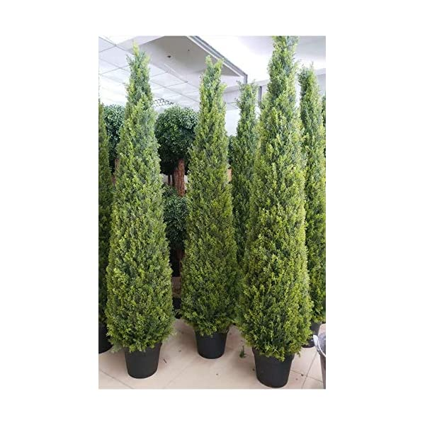 59 inch /4.9 ft Artificial Cypress Topiary Tree Artificial Cedar Cypress Tree Faux Cypress Spiral Silk Tree Boxwood Topiary Artificial Tree,Artificial Cypress Leave Spiral Tree,Set of 1