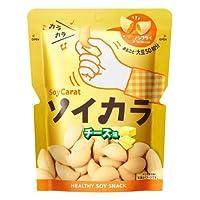 大塚製薬 ソイカラ チーズ味 18袋セット