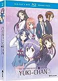 The Disappearance of Nagato Yuki-Chan: The...