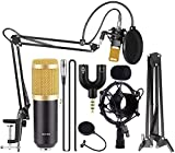 Techtest BM800 Broadcasting Studio Recording Condenser Microphone Mic Kit with Plastic Shock Mount