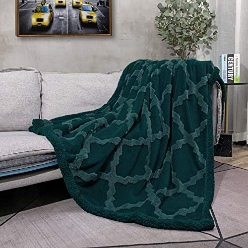 CAMPIR Sherpa Throw Blanket for BedSuper Soft Warm Dual Sided BlanketMachine Washable Fleece BlanketsFuzzy Plush Blanket for Sofa Couch Bed Emerald Green 51quotx63quot