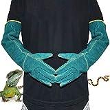Fovely Guantes de mordida de Seguridad Anti-mordida, 1 par de Guantes de manipulación de Animales Anti-mordida Anti-arañazos para Perro Gato Loro Serpiente Serpiente Lagarto Reptil Animales Salvajes