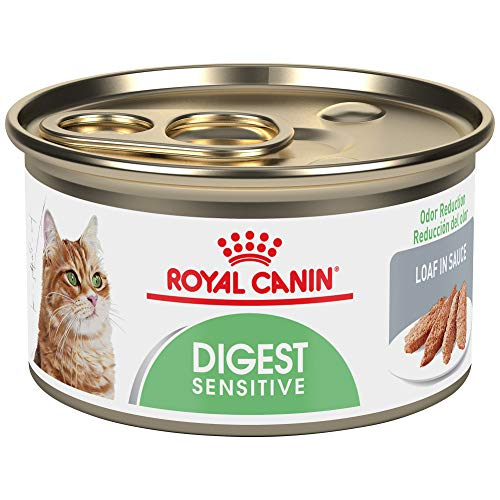 Royal Canin Feline Care Nutrition Digest Sensitive Loaf In Sauce Canned Cat Food, 3 oz Can (Pack of 24)