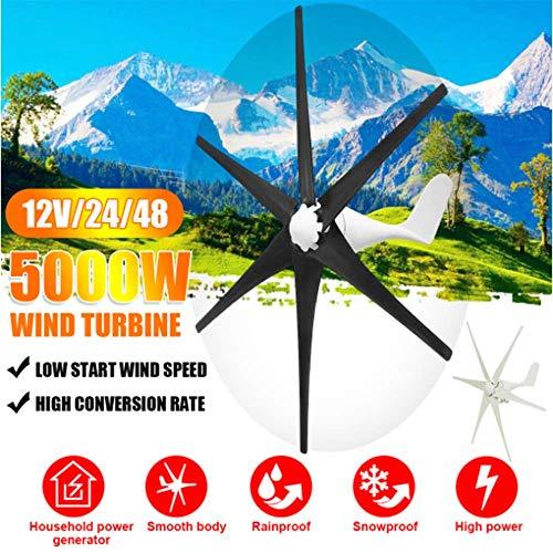 SISHUINIANHUA 5000W Windgenerator 12V / 24V / 48V 6 Blatt-Schwarz-Windkraftanlagen Horizontale Startseite Powers Windmühle Energieanlagen Lade,Schwarz,24v