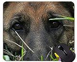 Mausunterlagen - Schäferhund-Hundebrille-Militärarbeiten, Hundepersonalisierte Rechteck-Spiel-Mausunterlagen