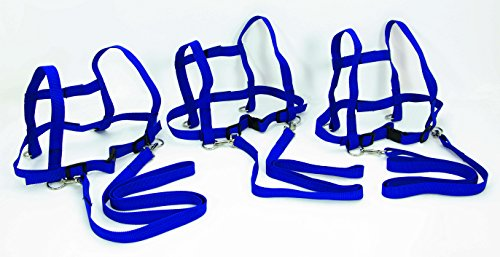 FLIXI Pferdeleine mit Sicherheits-Schnell-Verschluss 3er Set für Kinder zum Spielen - robust