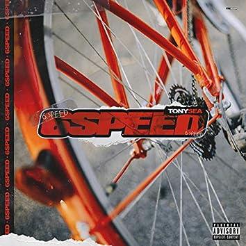 6 Speed