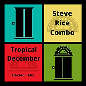 Tropical December (Elevator Mix)