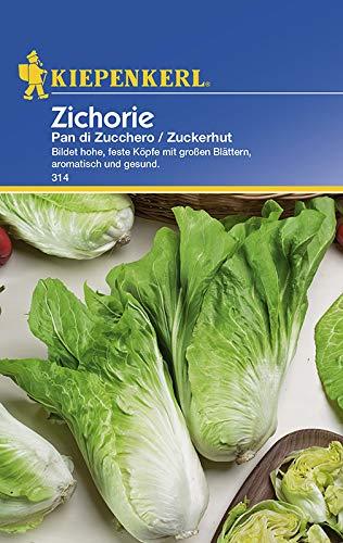 Gemüsesamen - Zichorie - Zuckerhut von Kiepenkerl [MHD 01/2019]