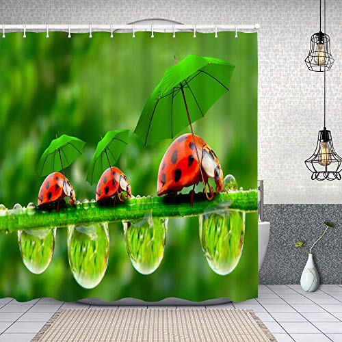 Cortina Baño,Imagen divertida de la naturaleza Mariquitas con paraguas caminando sobre la hierba,Cortina de Ducha Tela de Poliéster Resistente Al Agua Cortinas de Ducha Baño con 12 Ganchos,180x180cm