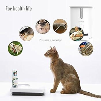 Distributeur Automatique De Nourriture pour Chats Automatic Pet Feeder Dispositif d'alimentation et d'animal Intelligent pour Les Chats et Les Petits Chiens